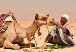Путешествие на Ближний Восток: 6 советов для женщин