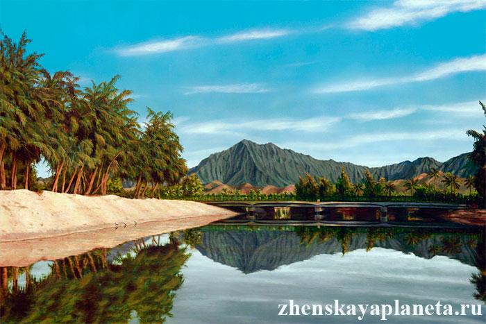 гавайский рай