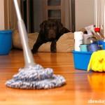 Как навести порядок в доме – 6 рациональных советов